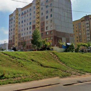 Витебск, Улица Чкалова, 50к2: фото