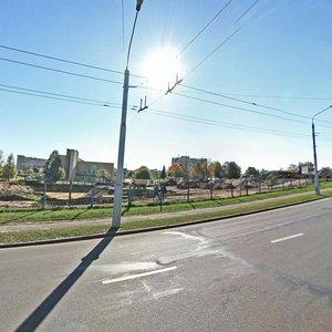 Минск, Улица Ваупшасова, 10: фото