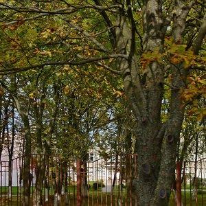 Минск, Улица Петра Глебки, 88: фото